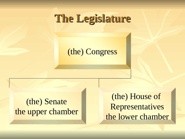 The Legislature (the) Congress (the) Senate the upper chamber (the) House of Representatives the lower chamber