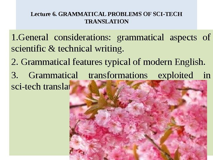 Lecture 6. GRAMMATICAL PROBLEMS OF SCI-TECH TRANSLATION 1. General considerations:  grammatical aspects of scientific &