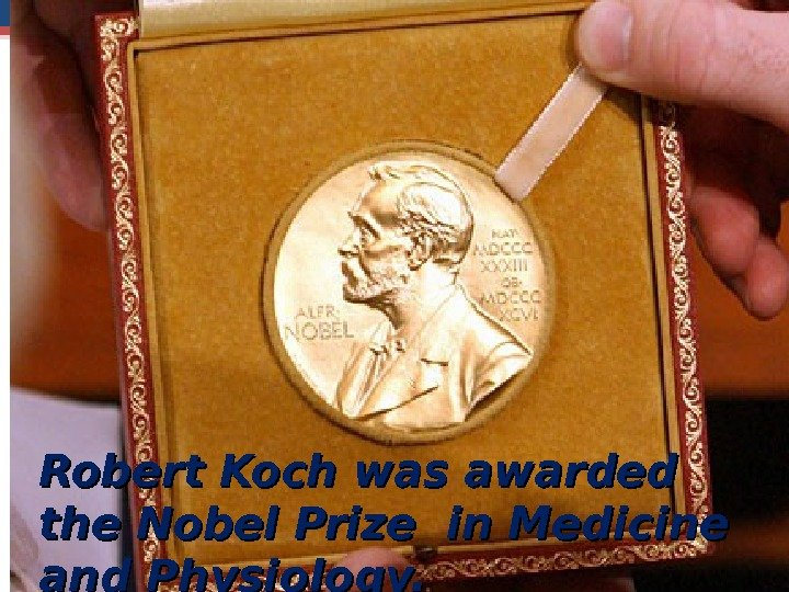 Robert Koch was awarded the Nobel Prize in Medicine and Physiology.