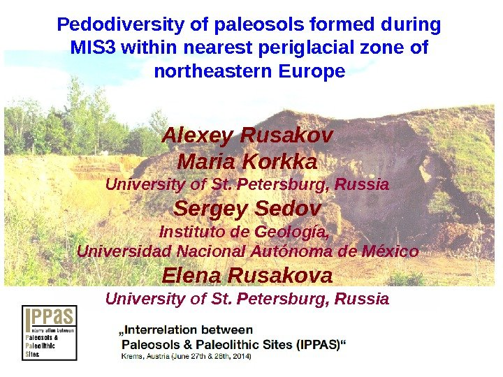 Pedodiversity of paleosols formed during MIS 3 within nearest periglacial zone of northeastern Europe