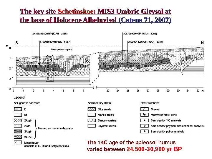 The key site Schetinskoe : MIS 3 Umbric Gleysol at the base of Holocene
