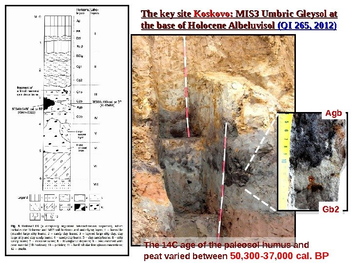 The key site Koskovo:  MIS 3 Umbric Gleysol at the base of Holocene Albeluvisol (QI