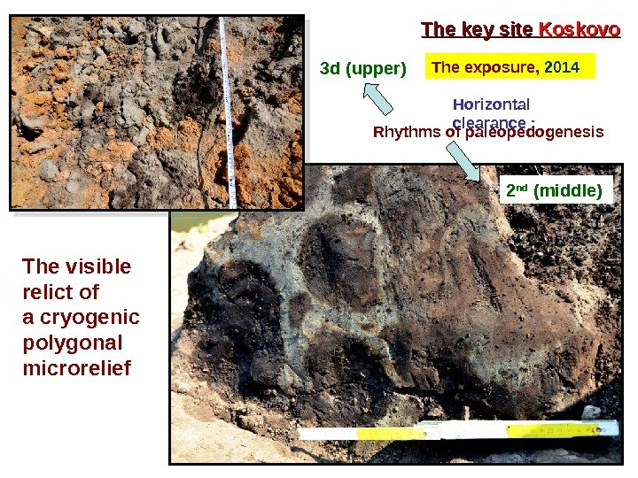 The key site Koskovo The  exposure,  2014 Horizontal clearance :  Rhythms of paleopedogenesis