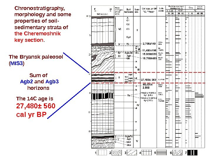 Chronostratigraphy,  morphology and some properties of soil- sedimentary strata of  the Cheremoshnik key section.