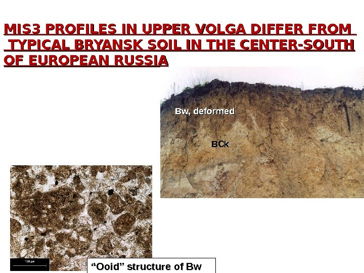 MIS 3 PROFILES IN UPPER VOLGA DIFFER FROM TYPICAL BRYANSK SOIL IN THE CENTER-SOUTH OF EUROPEAN