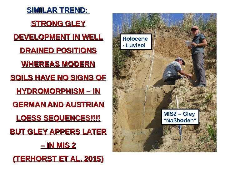SIMILAR TREND:  STRONG GLEY DEVELOPMENT IN WELL DRAINED POSITIONS WHEREAS MODERN SOILS HAVE NO SIGNS
