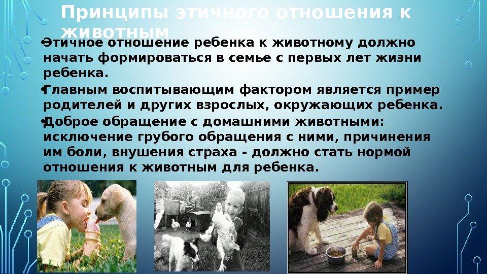 термобелье животные и люди сочинение доставка