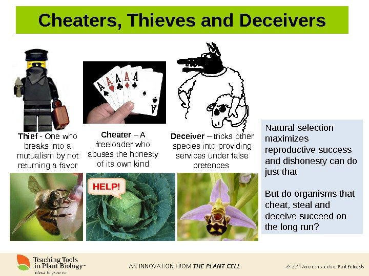 Natural selection maximizes reproductive success and dishonesty can do just that But do organisms that cheat,