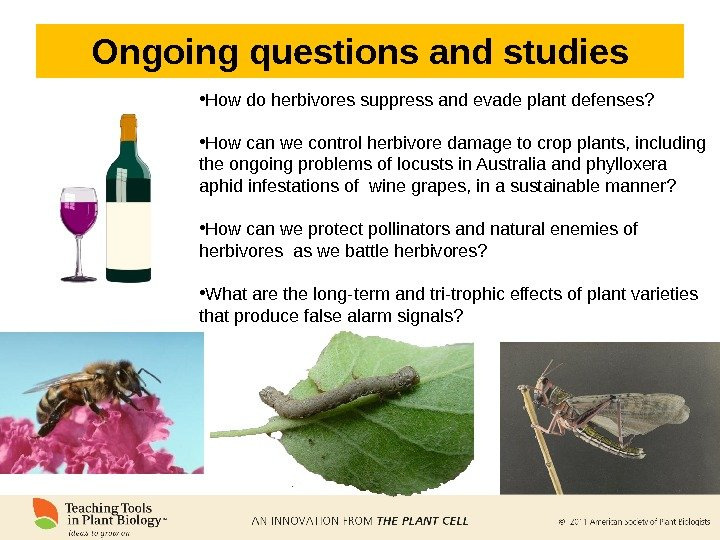 Ongoing questions and studies • How do herbivores suppress and evade plant defenses?  • How