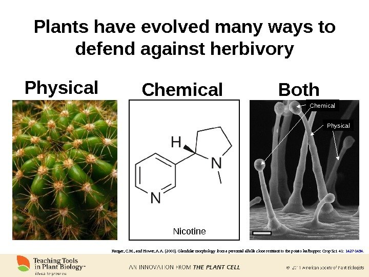 Plants have evolved many ways to defend against herbivory Physical Chemical Ranger, C. M. , and