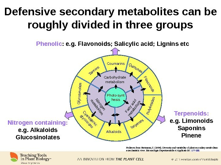 Redrawn from Hartmann, T. (1996). Diversity and variability of plant secondary metabolism:  a mechanistic view.