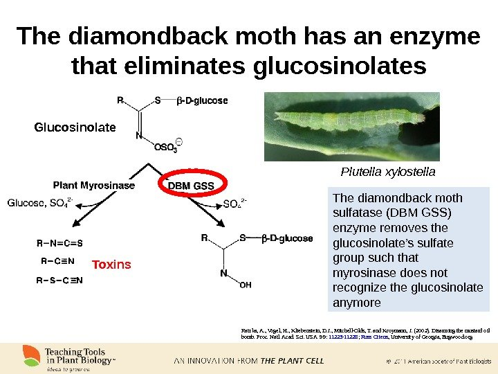 The diamondback moth has an enzyme that eliminates glucosinolates Ratzka, A. , Vogel, H. , Kliebenstein,