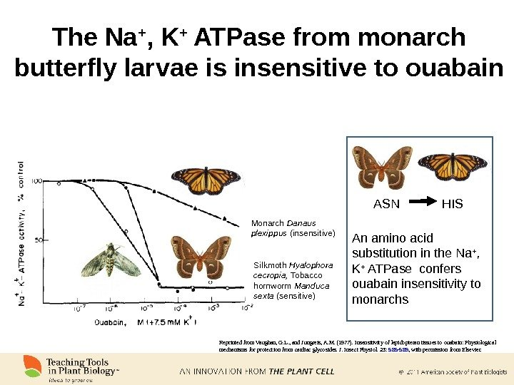 The Na + , K + ATPase from monarch butterfly larvae is insensitive to ouabain Reprinted