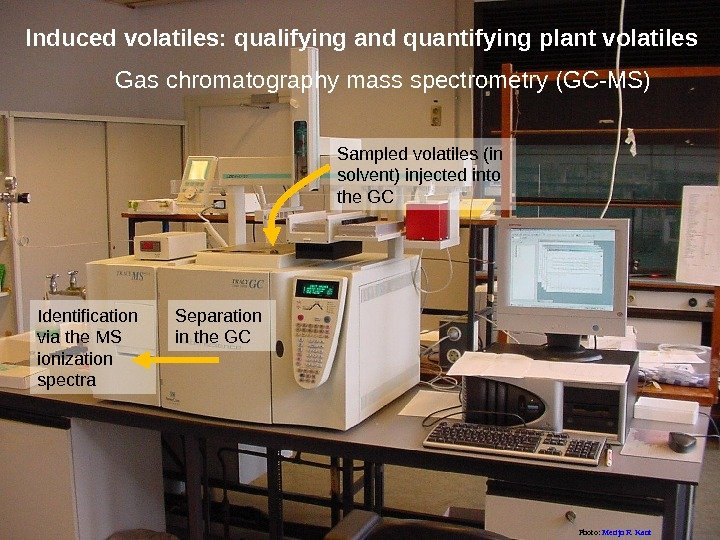 Gas chromatography mass spectrometry (GC-MS)Induced volatiles: qualifying and quantifying plant volatiles Sampled volatiles (in solvent) injected