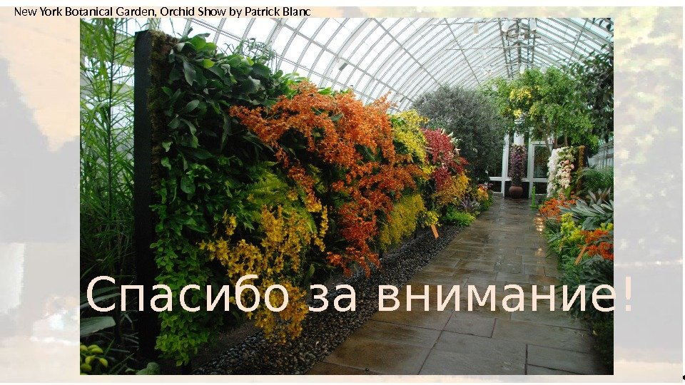 Спасибо за внимание!New York Botanical Garden, Orchid Show by Patrick Blanc