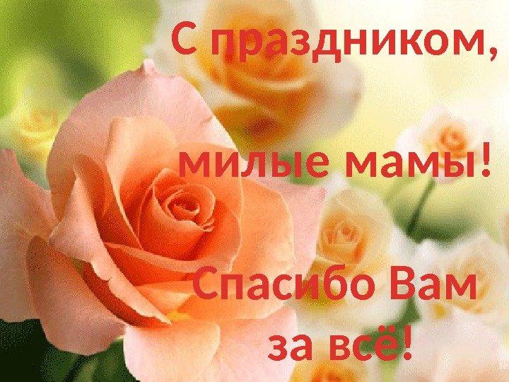 Праздник милых мам поздравления