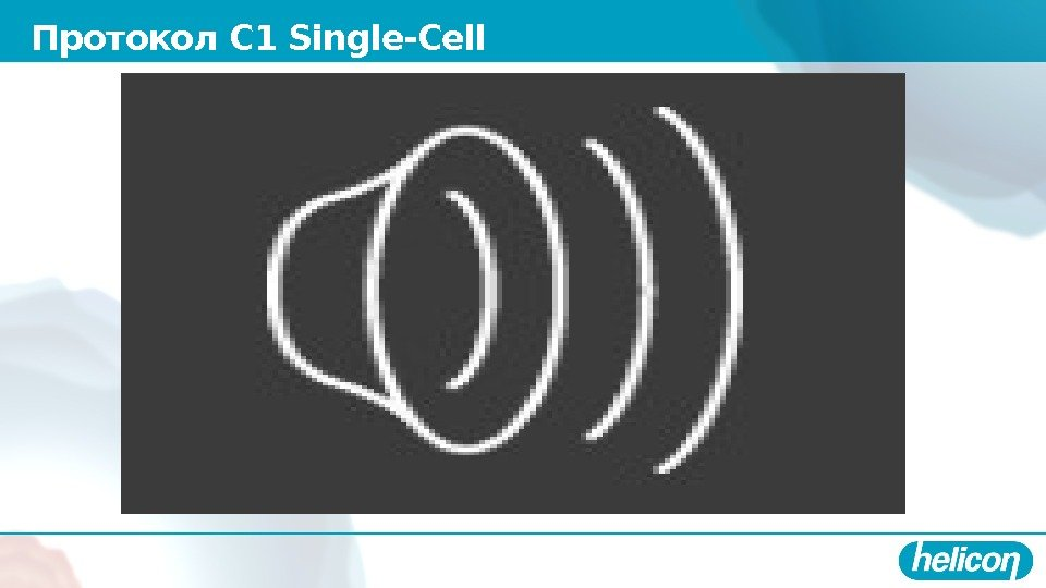 Протокол С 1 Single-Cell