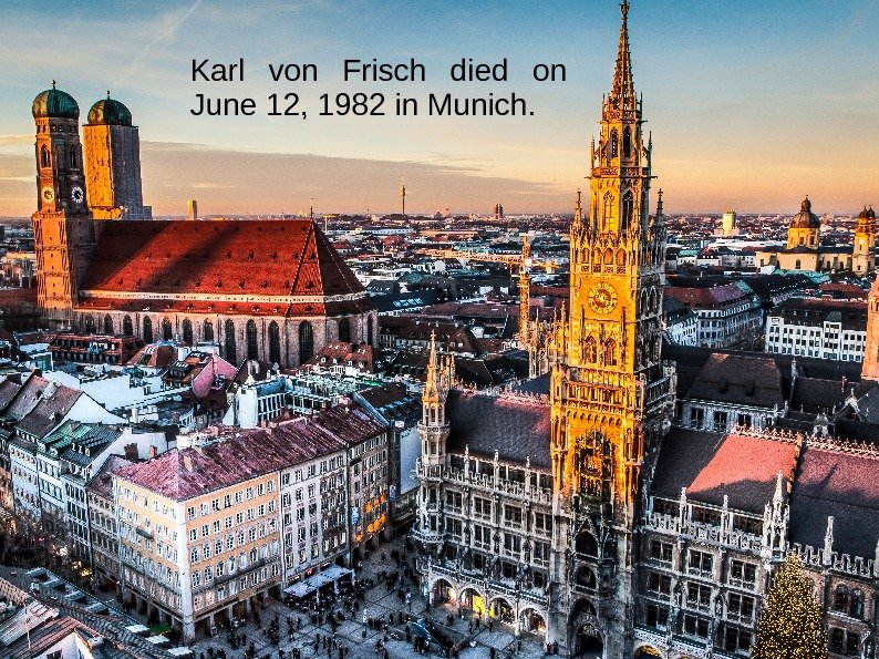 Karl von Frisch died on June 12, 1982 in Munich.
