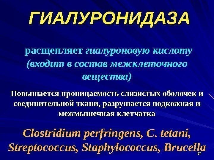 Гиалуронидаза препараты