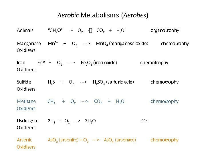 "Aerobic Metabolisms ( Aerobes ) Animals ""CH 2 O""  +  O 2"