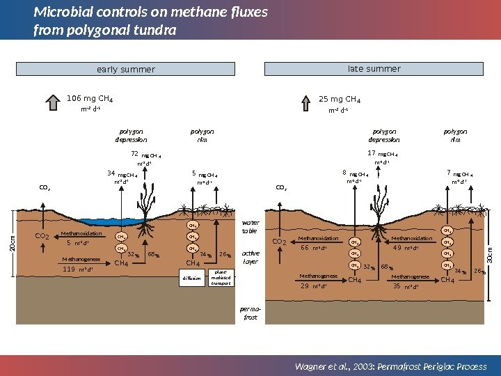 Microbial controls on methane fluxes from polygonal tundra Wagner et al. , 2003: Permafrost