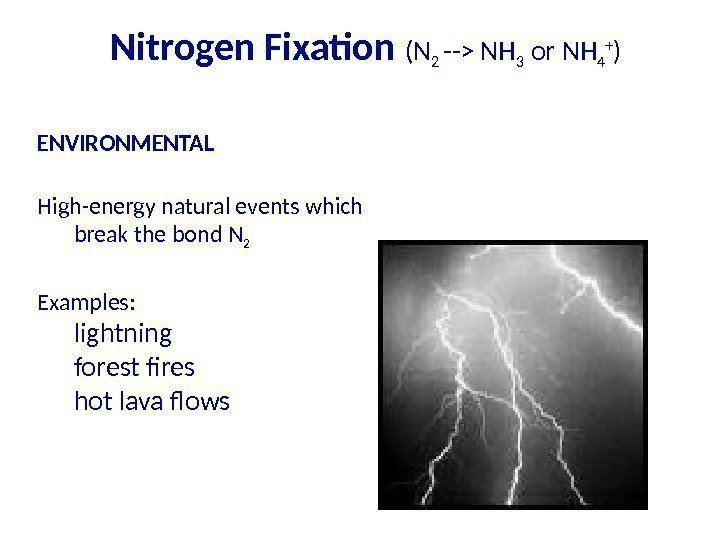 Nitrogen Fixation (N 2 -- NH 3 or NH 4 + ) ENVIRONMENTAL High-energy