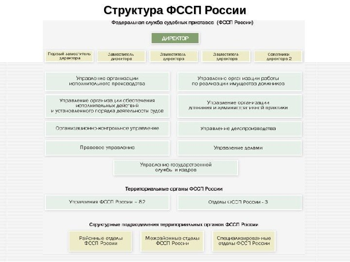 криминал года общая структура ца фссп россии сначала