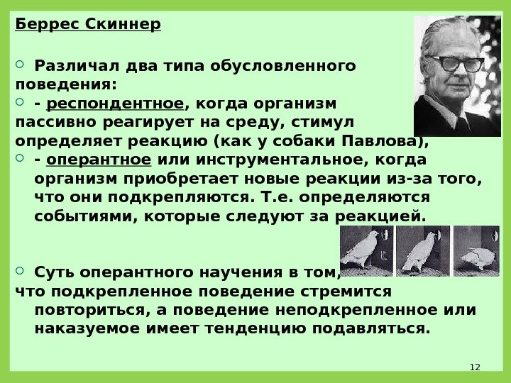 skinners theory