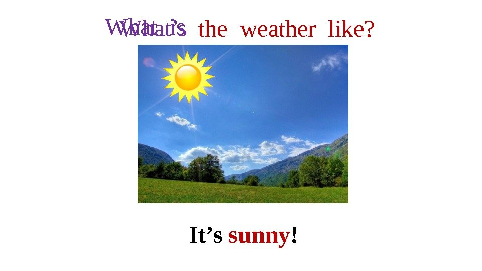 the weather like? It's sunny !What is  What's