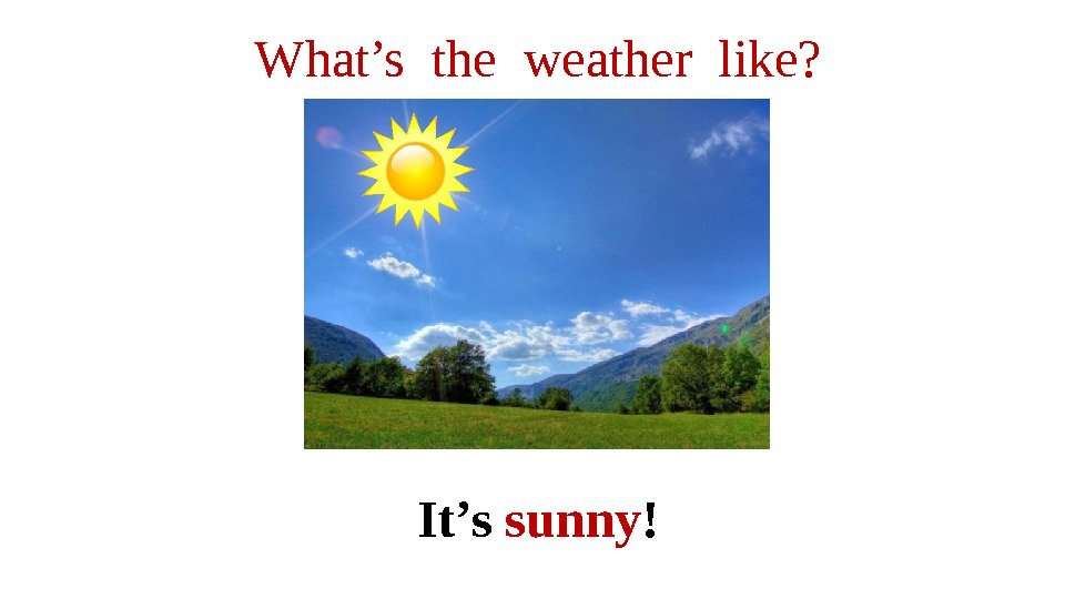 What's the weather like? It's sunny !