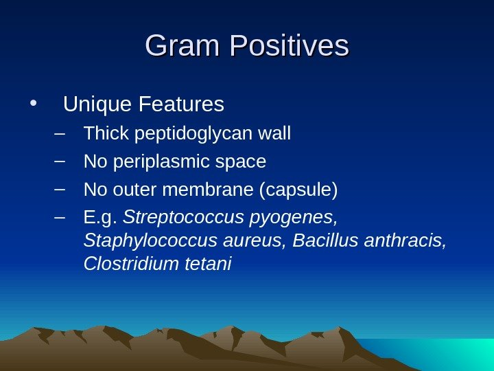 Gram Positives • Unique Features – Thick peptidoglycan wall – No periplasmic space –