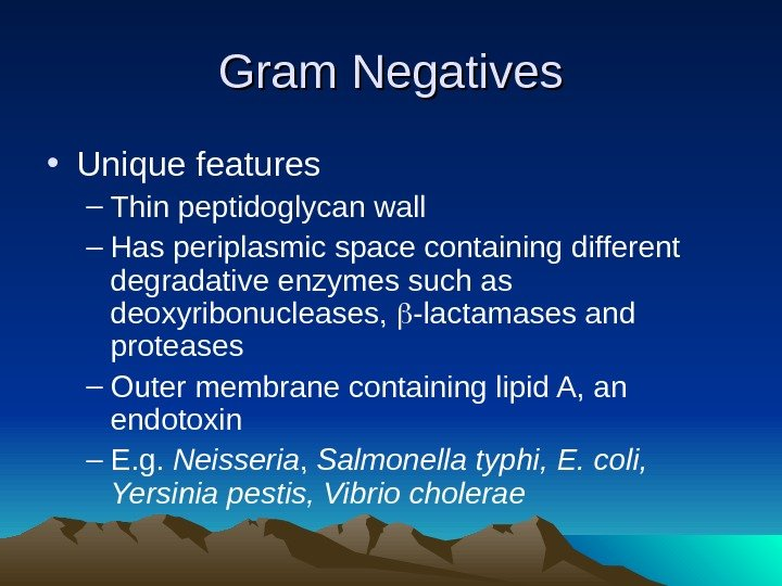 Gram Negatives • Unique features – Thin peptidoglycan wall – Has periplasmic space containing