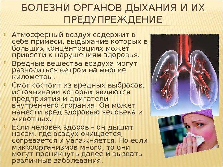 Фитотерапия заболеваний верхних дыхательных путей
