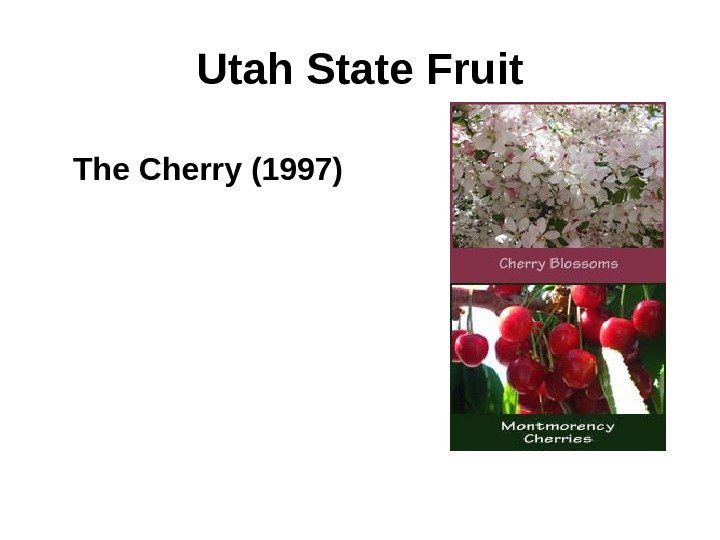 Utah State Fruit The Cherry (1997)