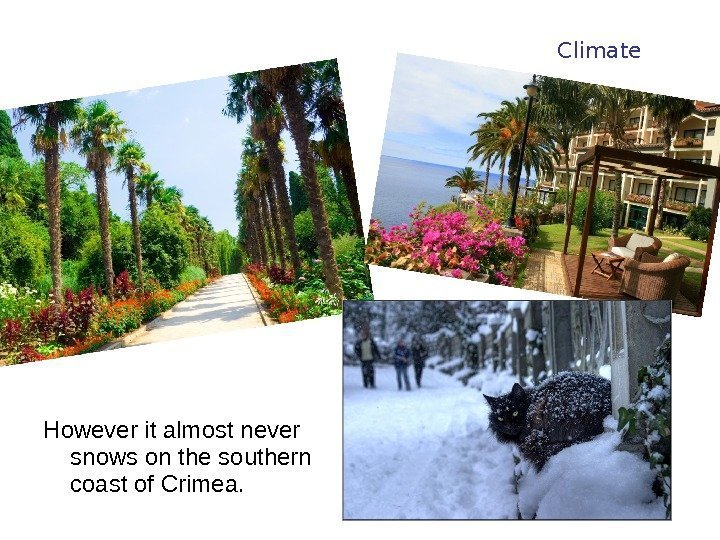 However it almost never snows on the southern coast of Crimea.  Climate