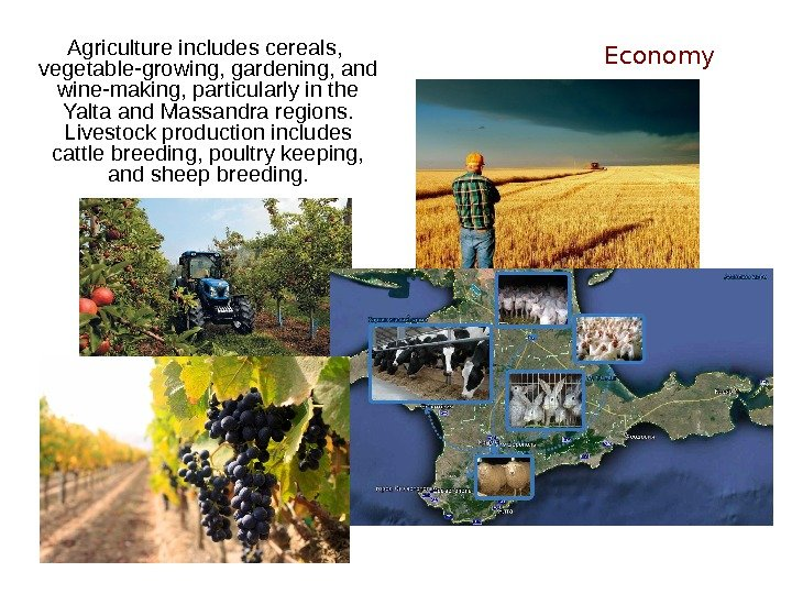 Agriculture includes cereals,  vegetable-growing, gardening, and wine-making, particularly in the Yalta