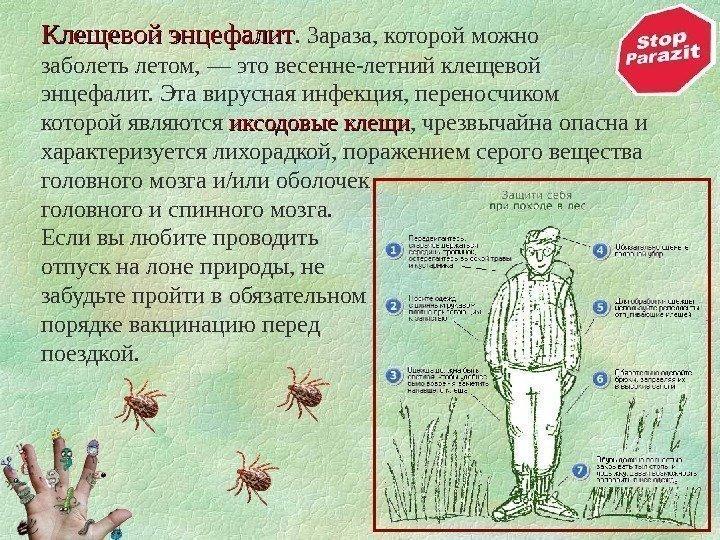 паразиты в организмах живых