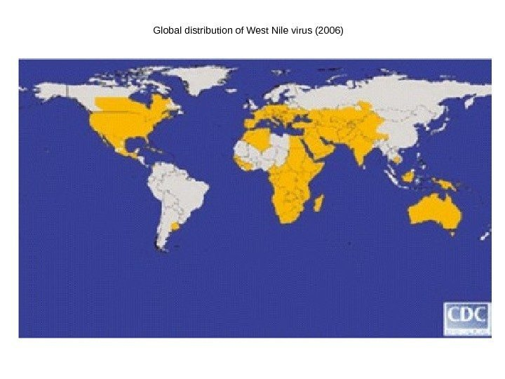 Global distribution of West Nile virus (2006)