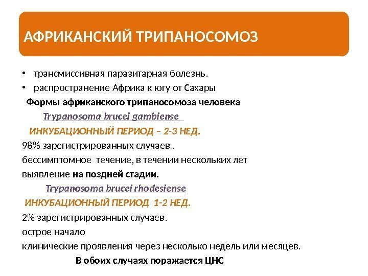 клиника от паразитов новосибирск