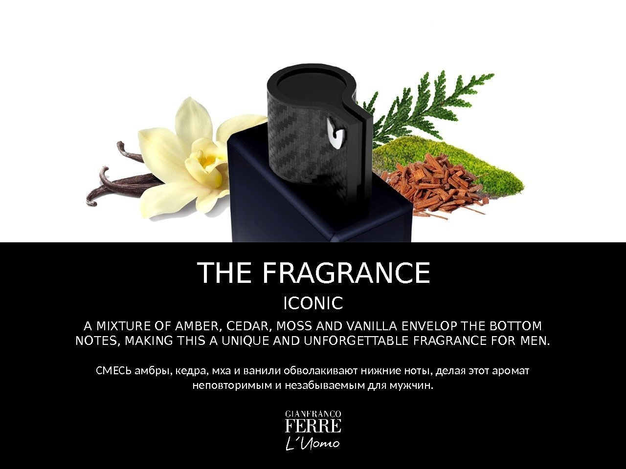 THE FRAGRANCE ICONIC A MIXTURE OF AMBER, CEDAR, MOSS AND VANILLA ENVELOP THE BOTTOM