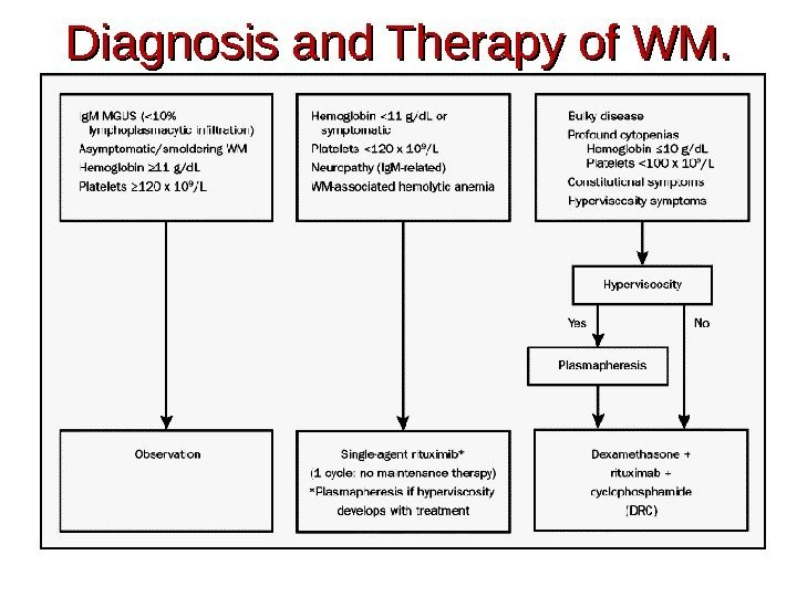 Diagnosis and Therapy of WM.