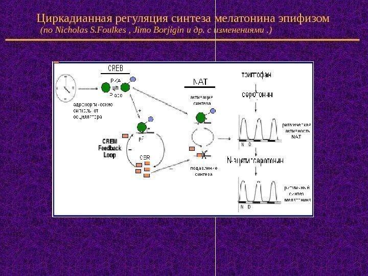Синтетический мелатонин