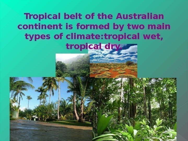 Tropical belt of the Australian continent is formed by two main types of climate: