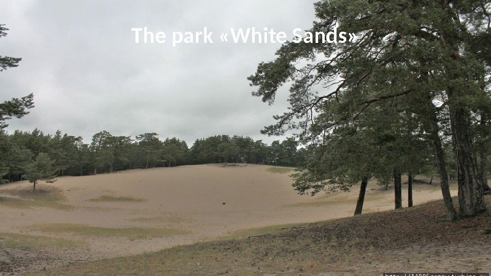 The park «White Sands»