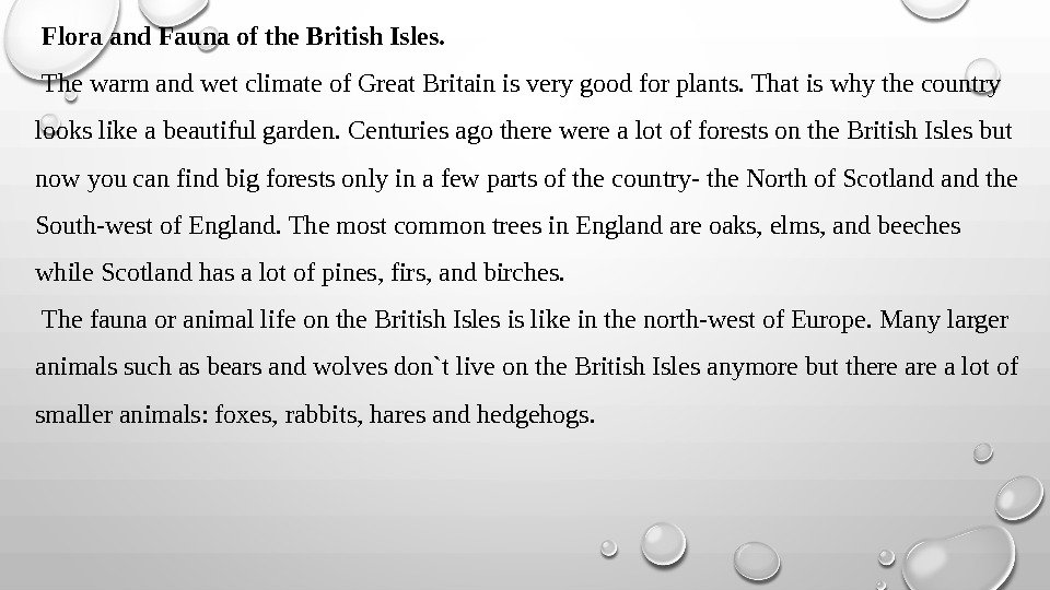Flora and Fauna of the British Isles.  The warm and wet climate