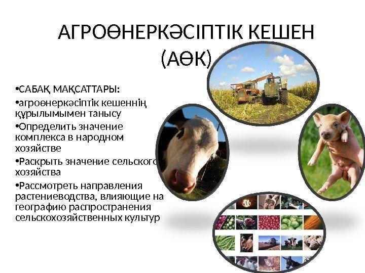 работы Рязанской животноводство знасение отрасли в народном хозяйстве президента упразднении