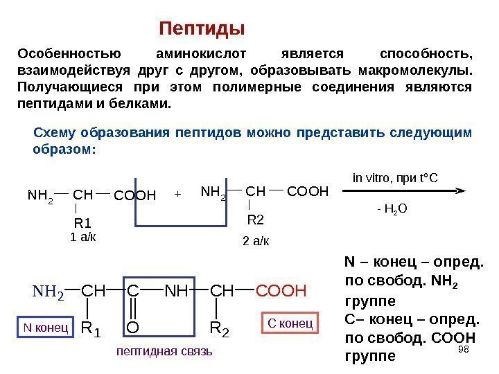 образование дипептидов из аминокислот локонов уксусом весьма