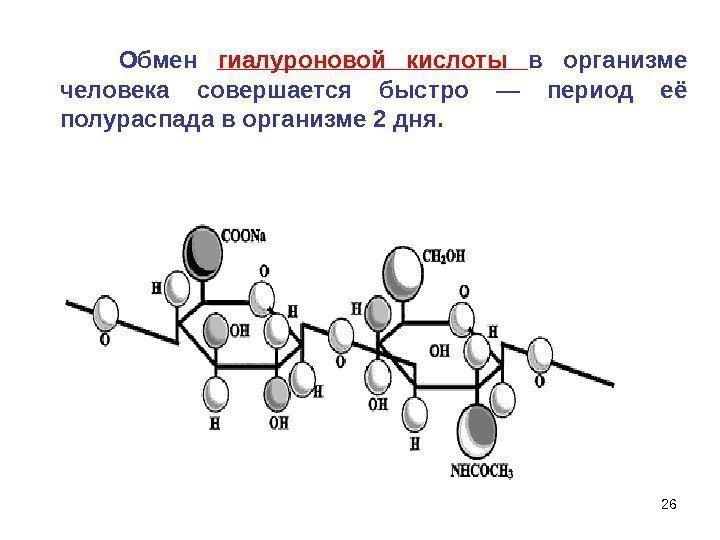 Гиалуроновая кислота в организме человека