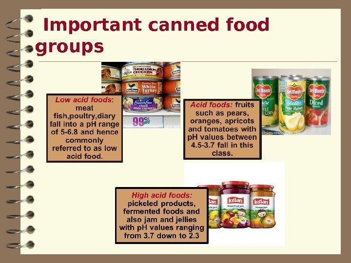Important canned food groups