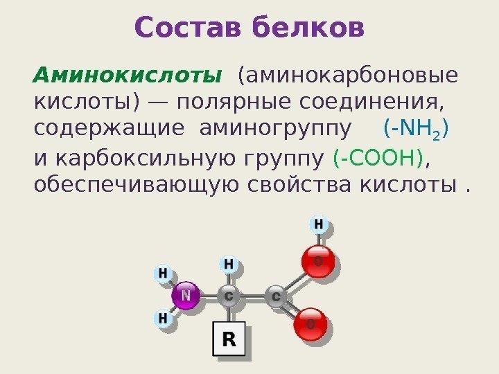 Белок и аминокислоты картинки